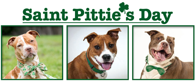 3 Pits Wearing the Green